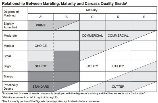Beef Quality Grades